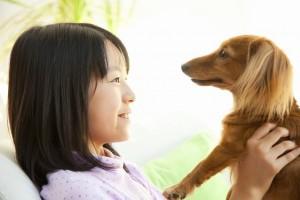 子犬の飼い方イメージ